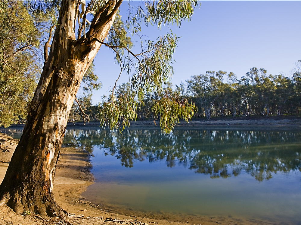The Gippsland region is one of the most pristine across the country.